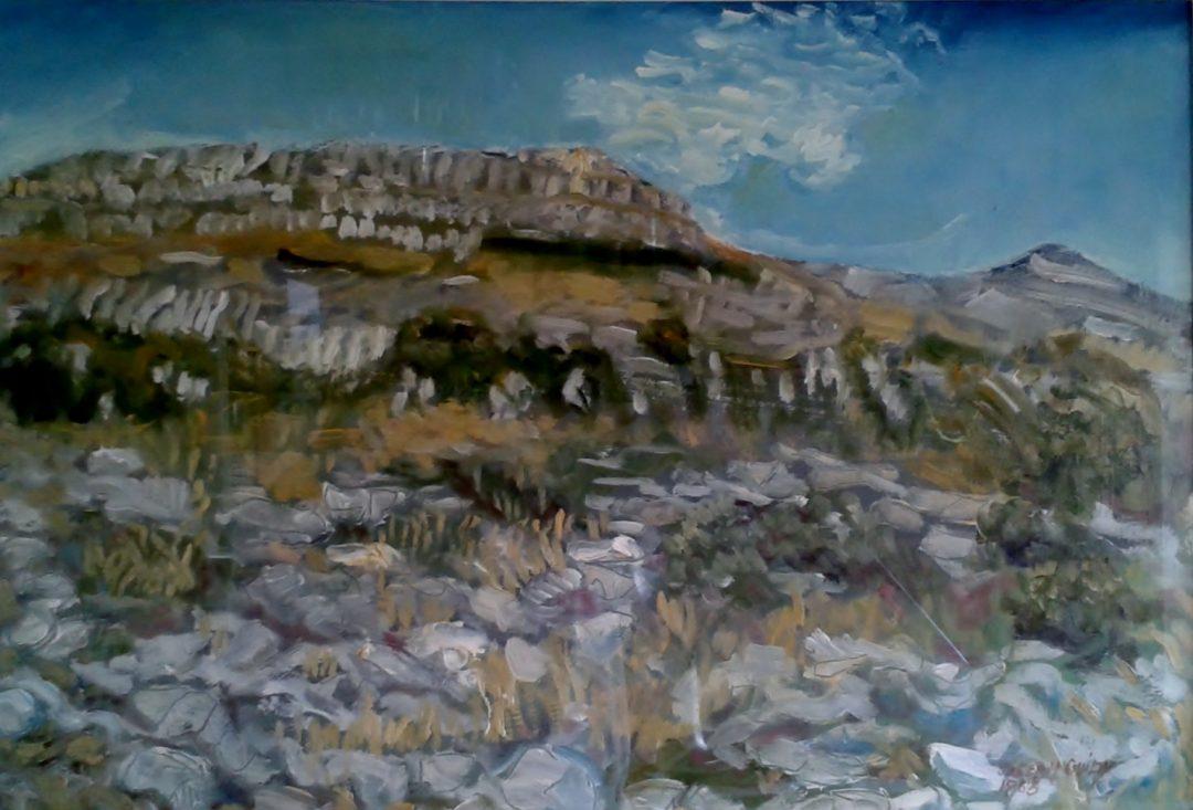Fertile rock, Burren