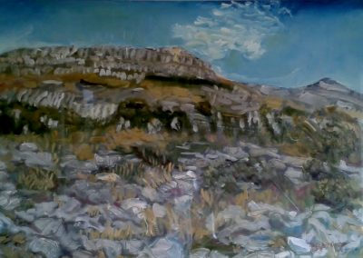 Fertile rock, Burren