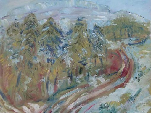 Fir trees, Burren