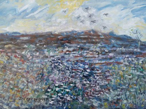 Burren lake with birds