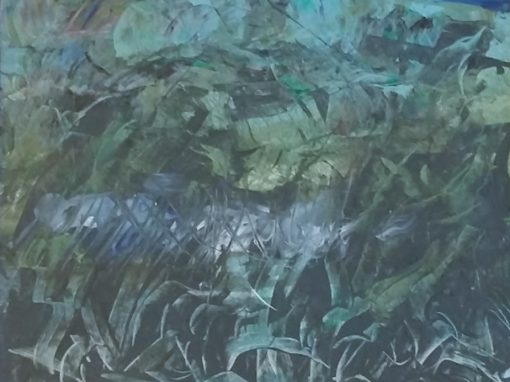 Marshy land, Burren