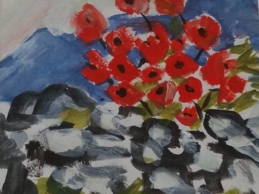 Connemara poppies