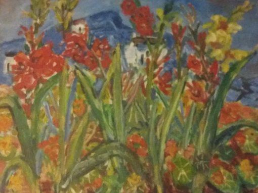 Burren view with gladioli